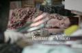 Romantic Vision